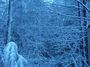 snowandice